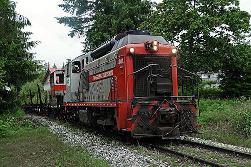 Logging Train Derailment
