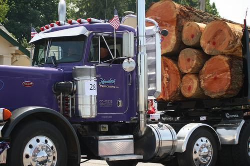 Logging Truck Fatal