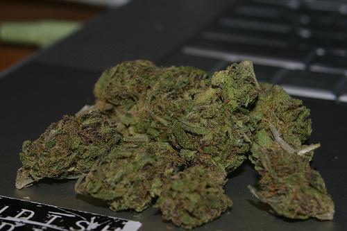 BC Pot Legalization