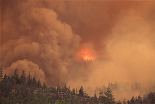 BC Wildfire Budget