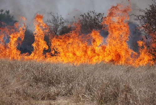 Wildfire danger prompts state of emergency in Wisconsin