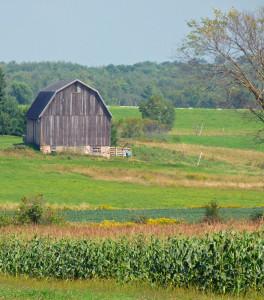 Legislation looks to recruit veterans into agriculture
