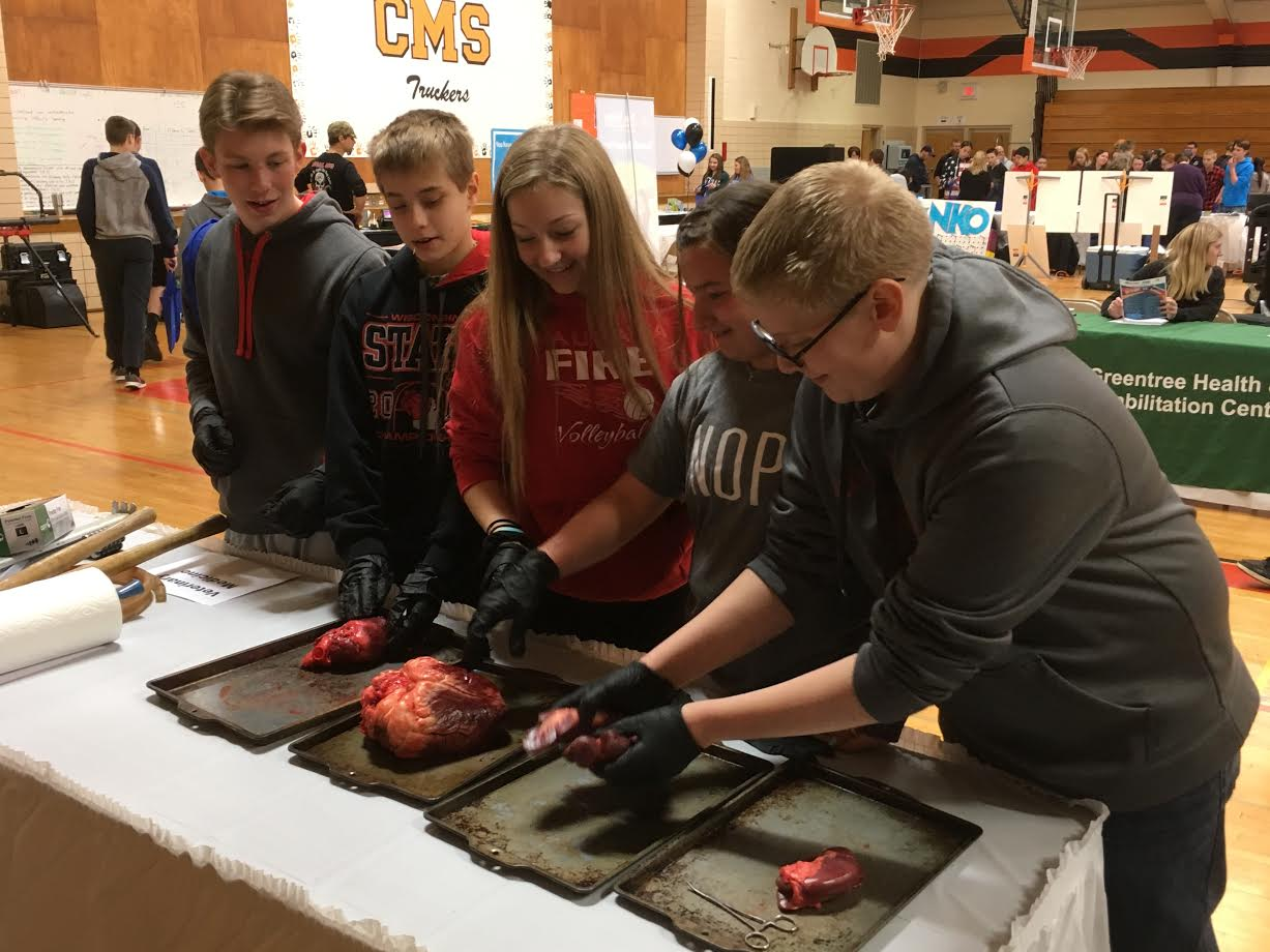 Career fair gives area 8th graders first-hand look at local career opportunites