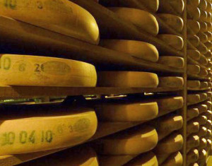 Cheese is now the official state dairy product of Wisconsin