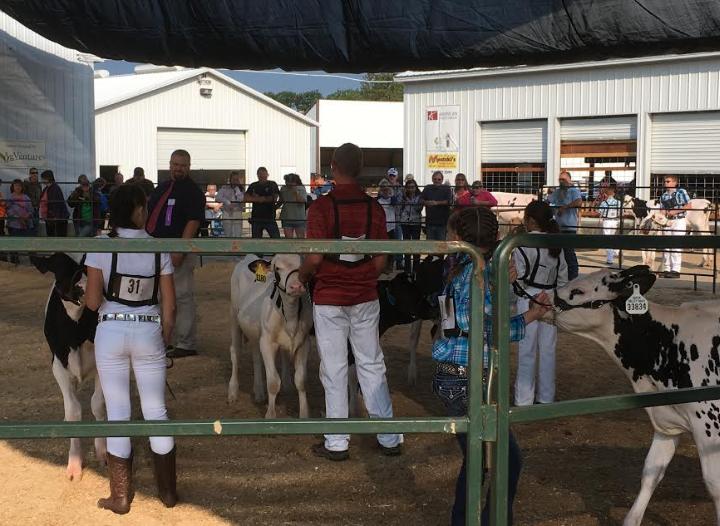 Oconto County Fair wraps up big weekend