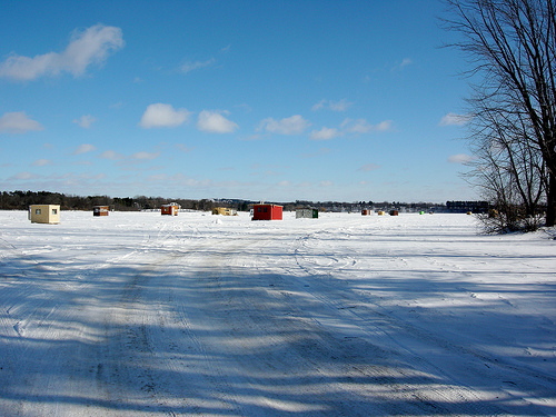 Time for tip ups! Update on ice and fishing conditions