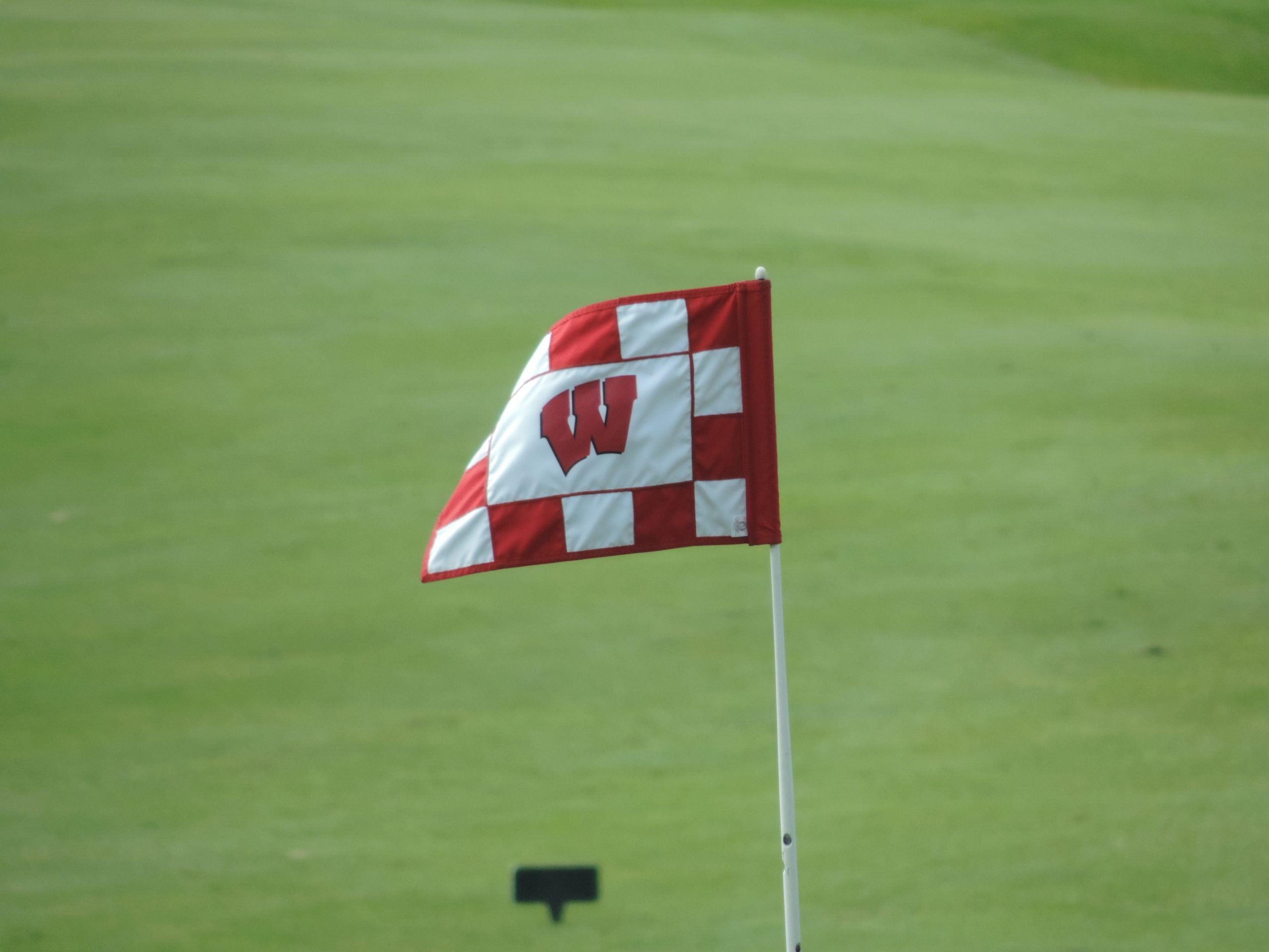 Wisconsin's Curtis tied for the lead at NCAA women's golf regional
