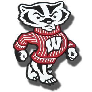 Badger volleyball ranked 9th in preseason coaches poll