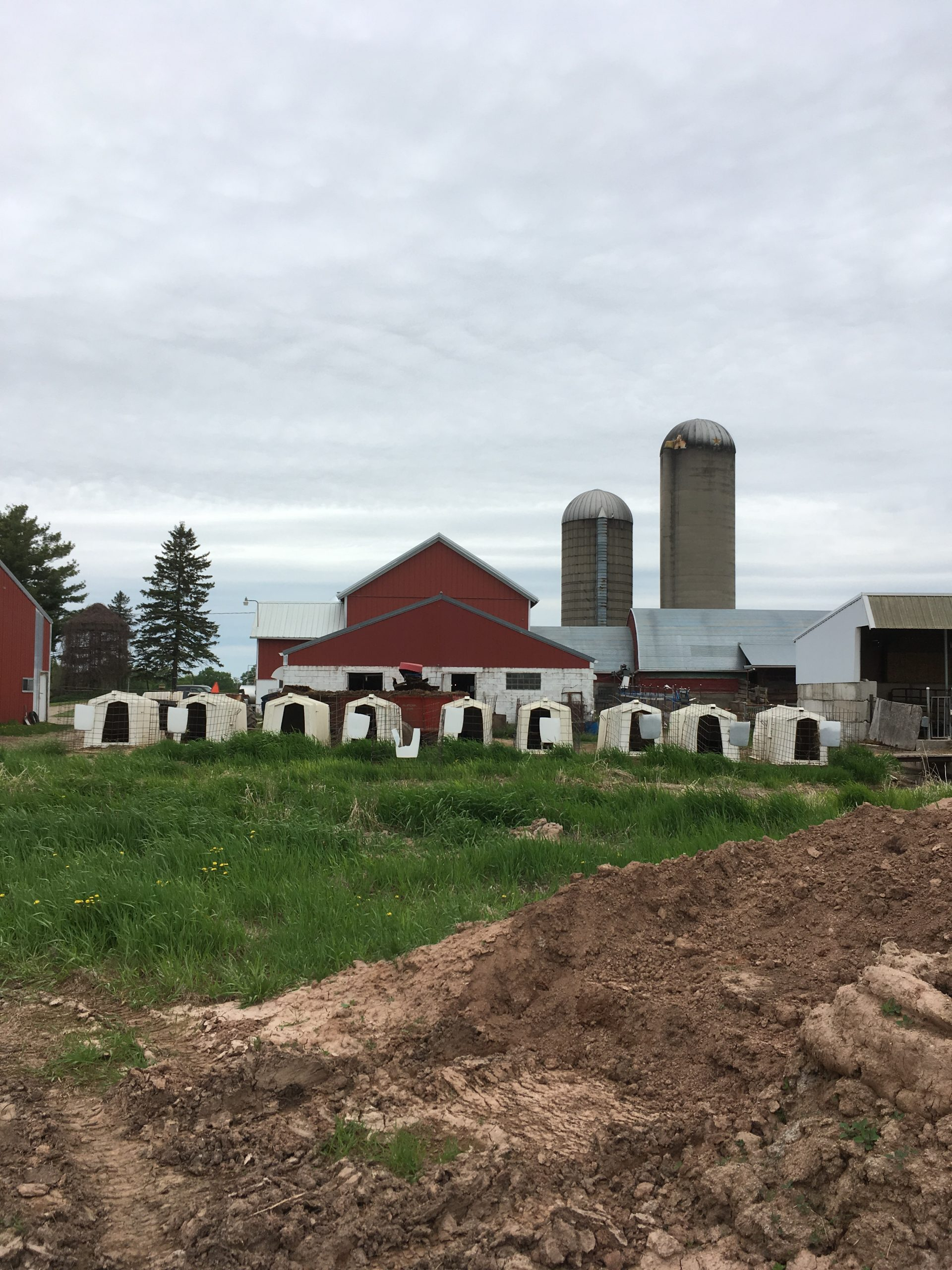 Schultz Farm