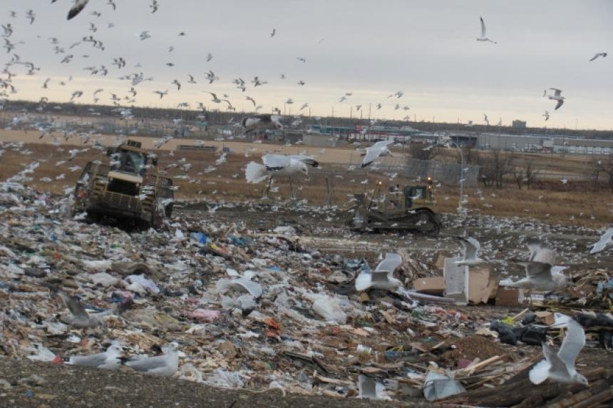 Man's body found at Regina city dump