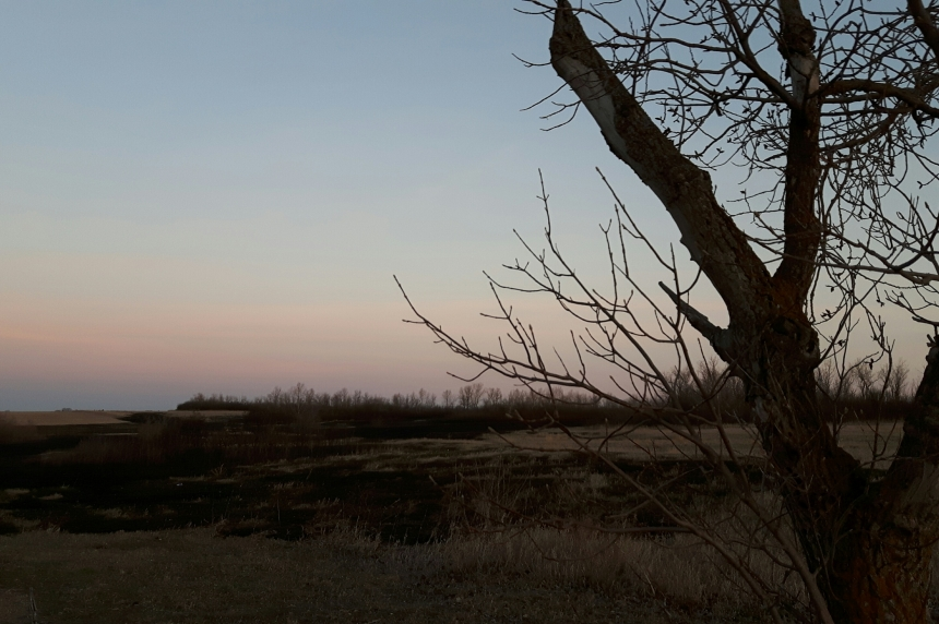 Fire crews deal with blaze at Condie Nature Refuge