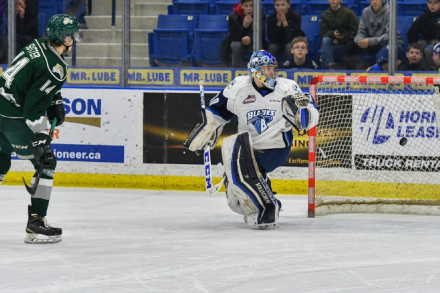 Blades close out homestand with shootout loss to Everett