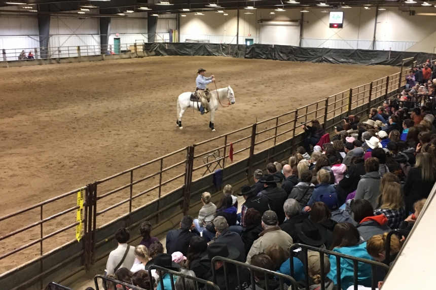 Horse lovers gallop to Praireland Park for Expo