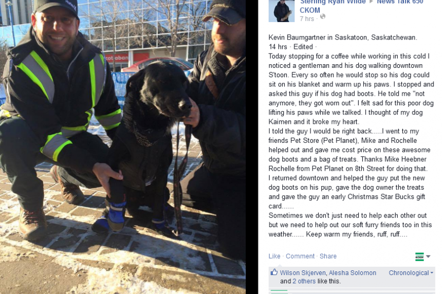 Good Samaritan lends a paw to furry friend