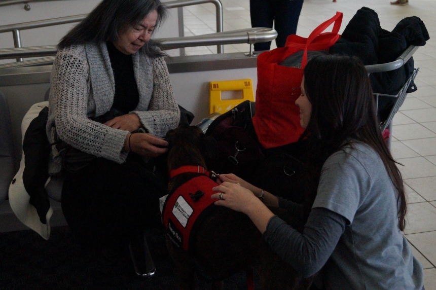 Research shows therapy dogs help with addiction treatment