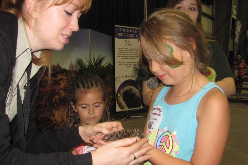 Kids make friends with a spider at the Queen City Ex