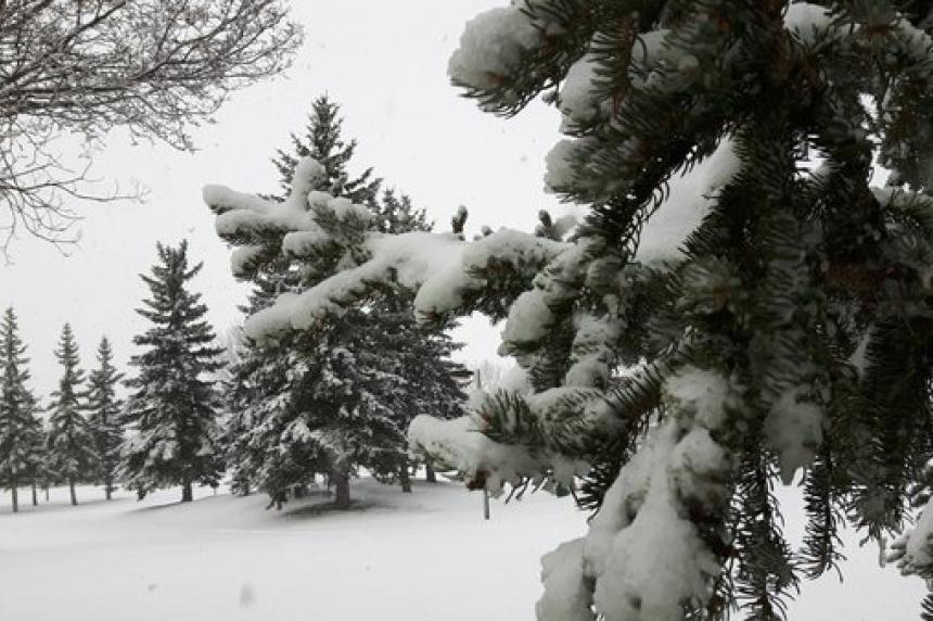 Saskatoon snow storage sites open Christmas day