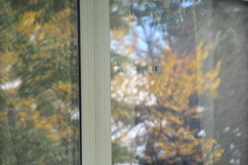 Neighbour heard shot at window in east Regina
