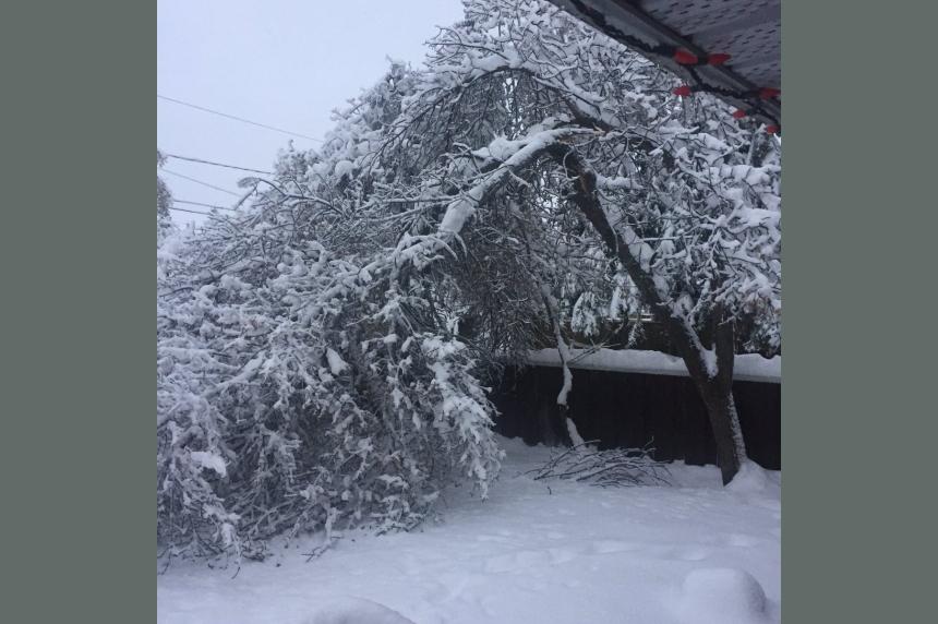 Heavy snow knocks out power to northwest Sask.
