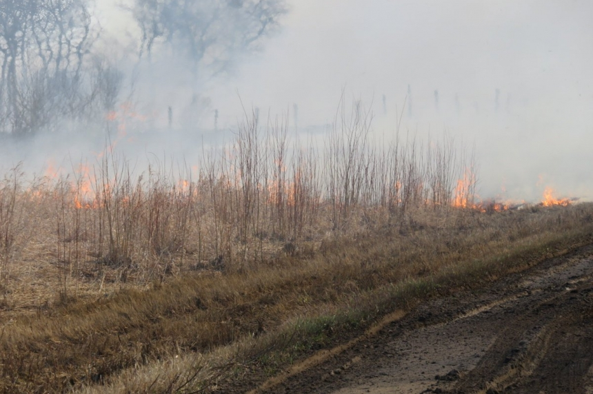 Crews respond to large grass fire outside Saskatoon