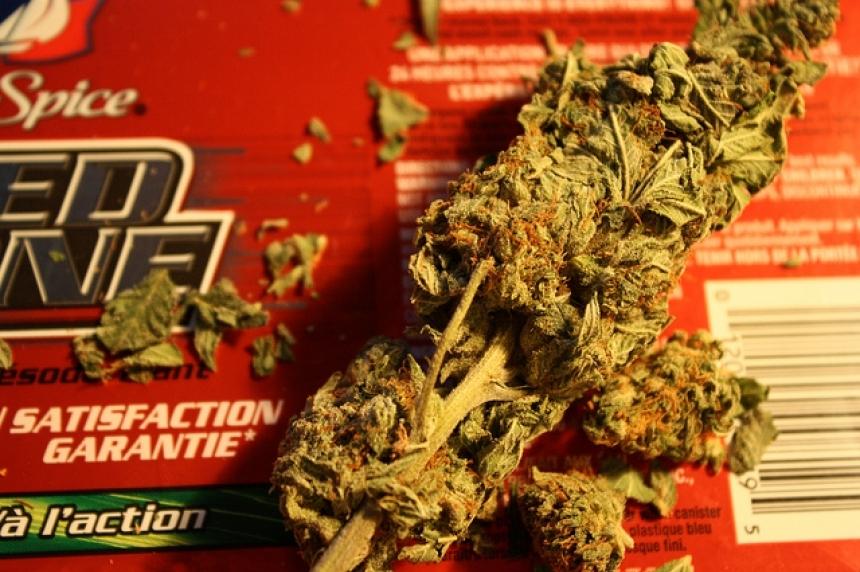 Regina man hoping to set up marijuana dispensary in Regina despite Saskatoon raid