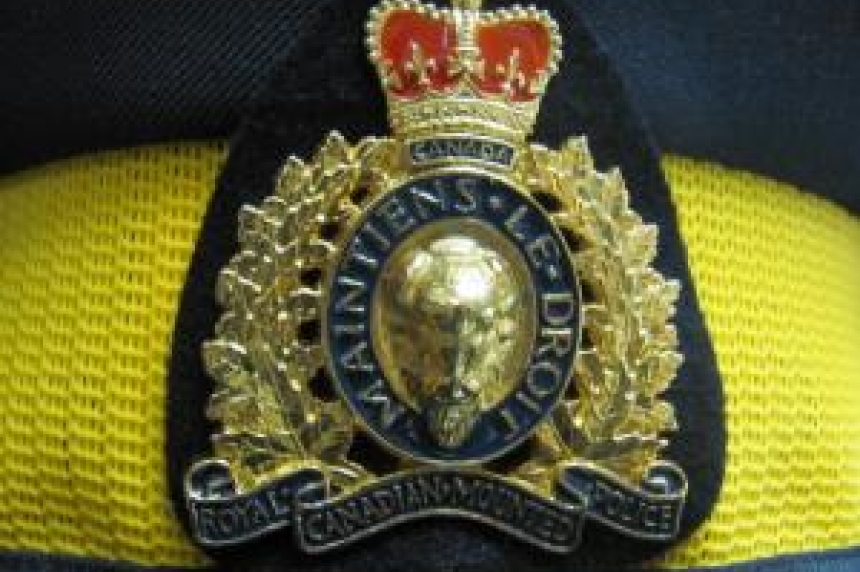 Pedestrian seriously hurt in highway crash south of Prince Albert