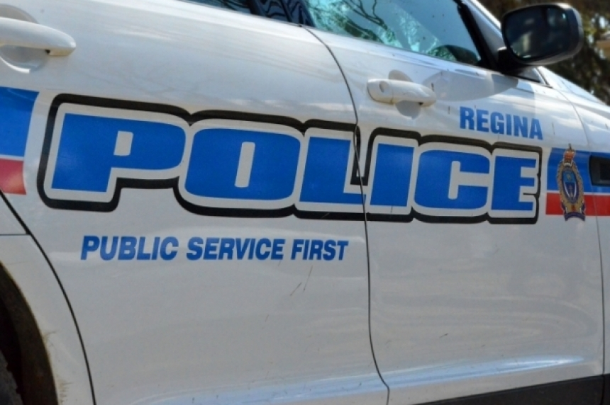Theft suspect leads Regina police on foot chase