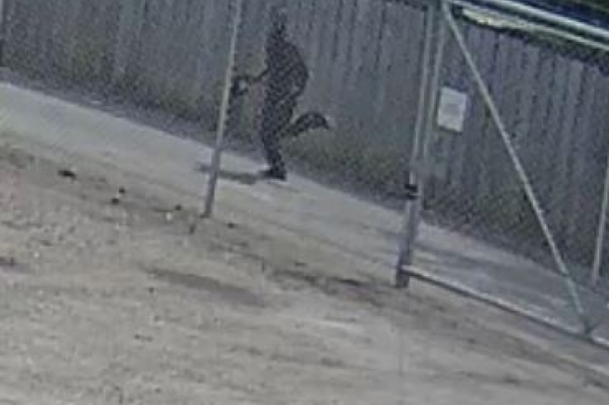 Surveillance video appears to show suspect in Saskatoon's 8th murder: police