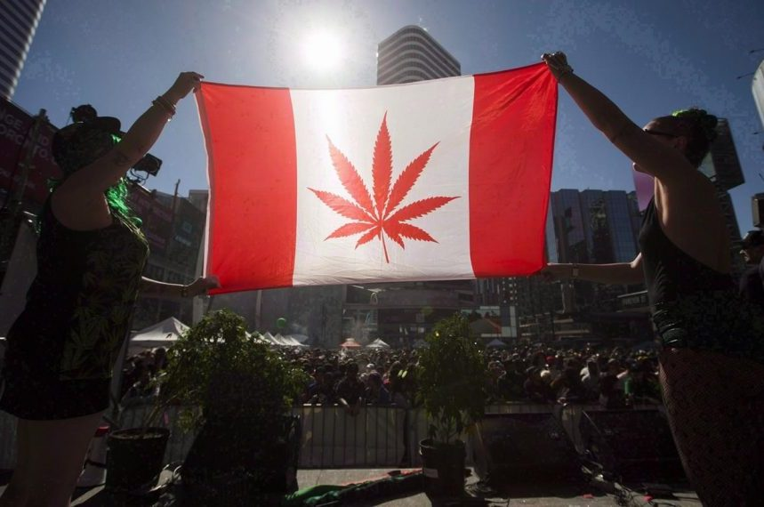 Many employers not ready for legal weed, World Cannabis Congress told