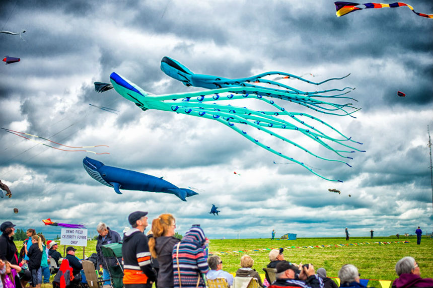 Windscape Kite Festival takes over the Swift Current sky