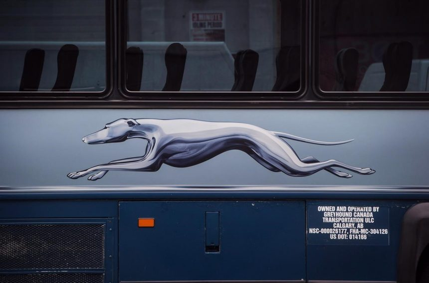 NDP wants transport minister to spell out plan to replace Greyhound service