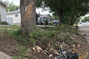 Broad Street North Crash - damage to tree hit by car - LS - Aug 28 2018