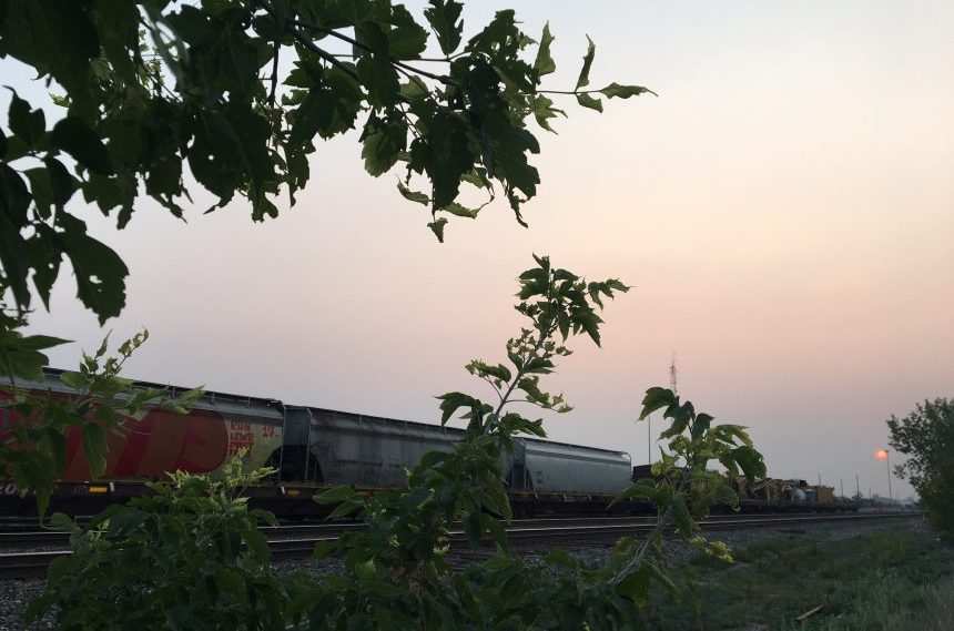 Wildfire smoke blankets Sask. skies: photos