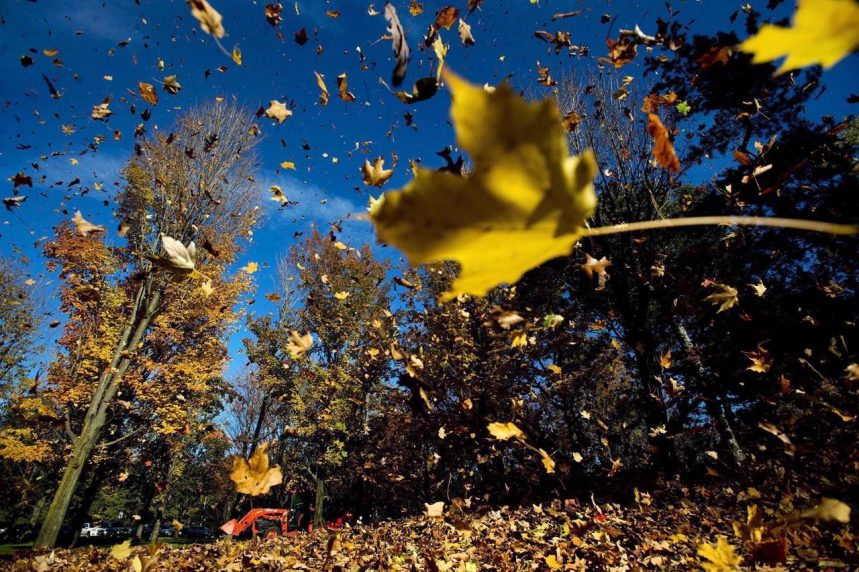 Weather Network forecasts a mild fall with a steady transition to winter