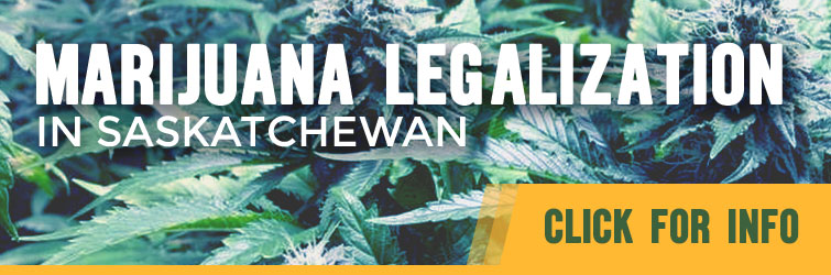 Feature: https://www.cjme.com/cannabis-a-look-at-legal-marijuana-in-saskatchewan/