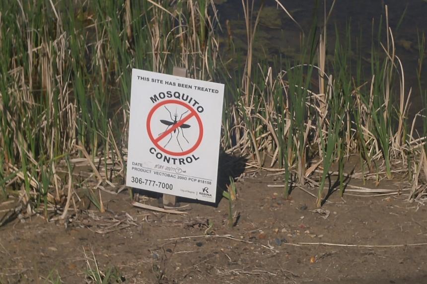 Regina battles mosquitoes, tent caterpillars