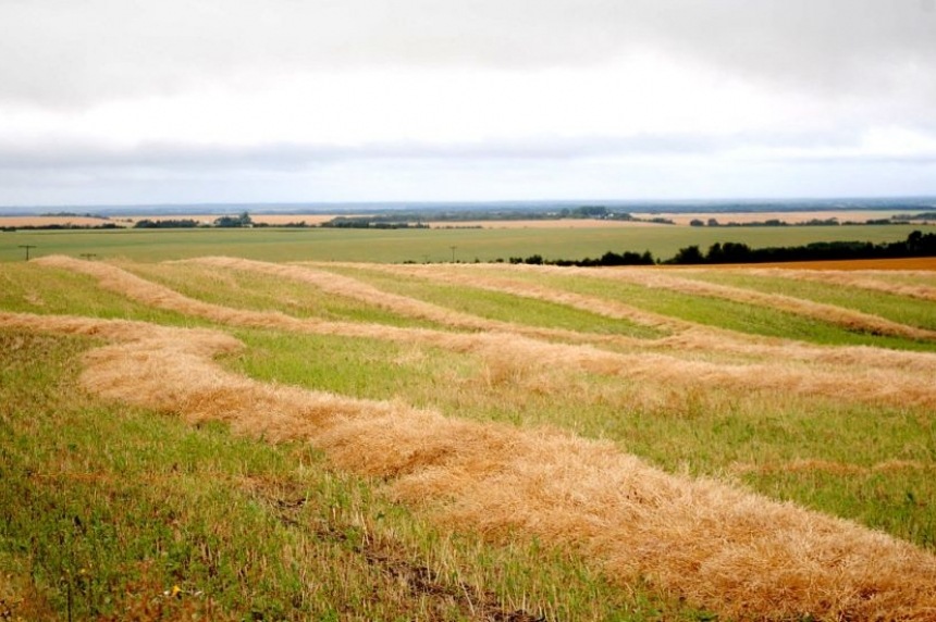 Farmers put on brakes as SaskEnergy shuts down grain dryers