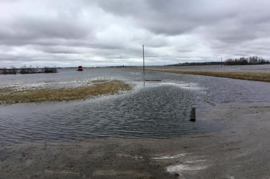 Salty water from Quill Lakes flooding farmland