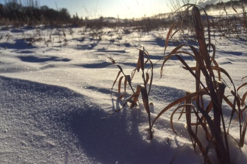 Warmer weekend due as Sask. crosses dead of winter