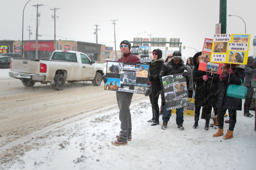 Protesters picket Saskatoon Safari expo