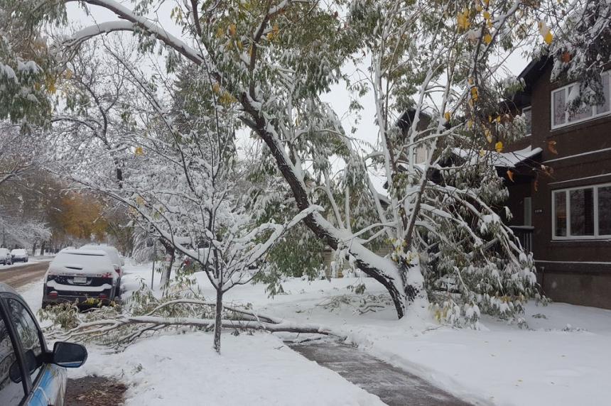 UPDATE: Saskatoon gets record-breaking snowfall ahead of Thanksgiving