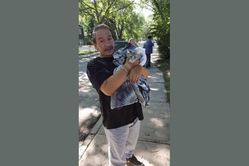 Kitten named Daisy rescued from tree in North Central Regina