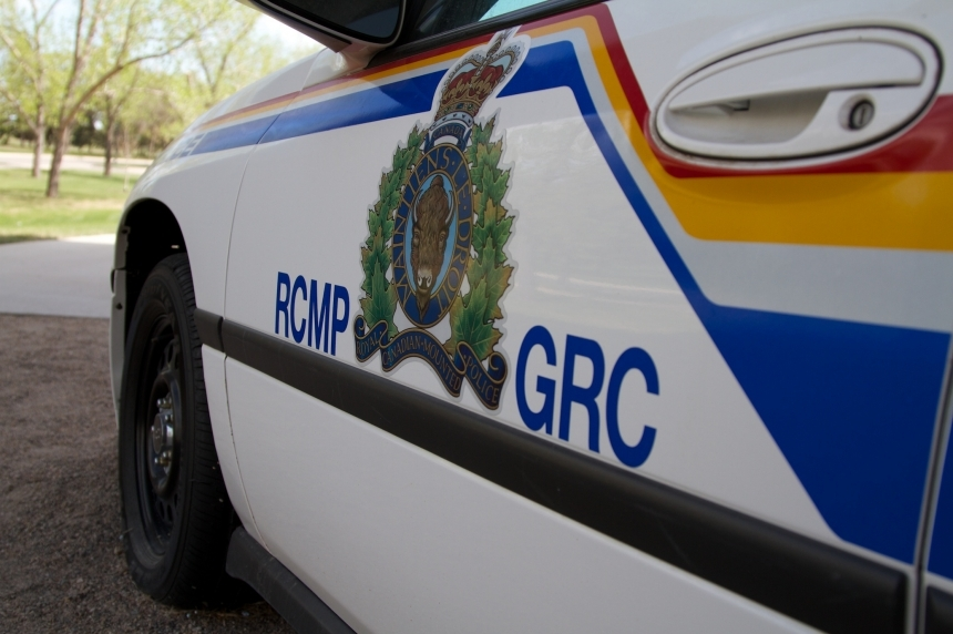 Semi carrying cattle rolled into ditch near Tompkins, Sask.