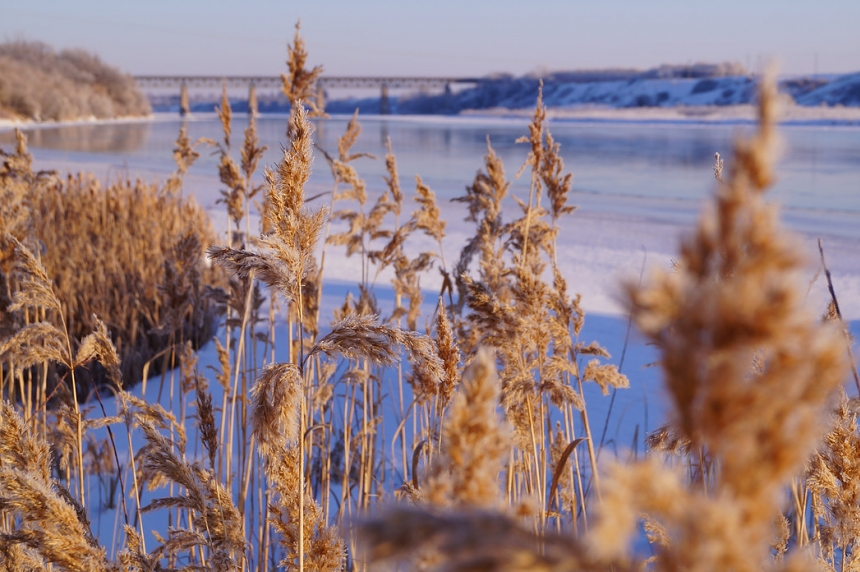 Cold air gripping Saskatchewan here to stay
