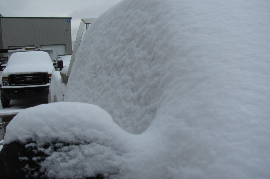 Snowfall hits southeast Sask., Regina
