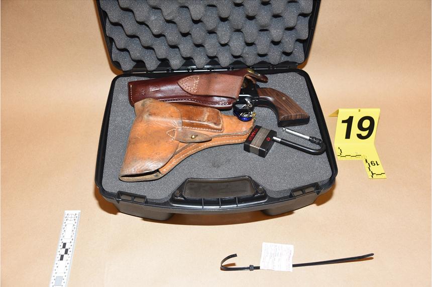 Expert maintains Stanley's handgun not prone to misfire