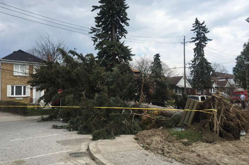 Third person dies as a result of destructive wind storm in Ontario
