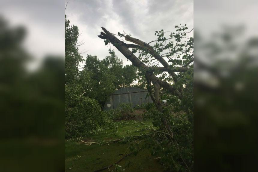 Severe thunderstorm system moves through Saskatchewan