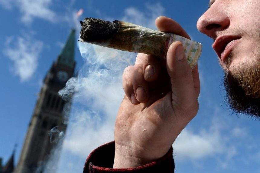 Government rejects 13 Senate changes to pot bill, including ban on home growing