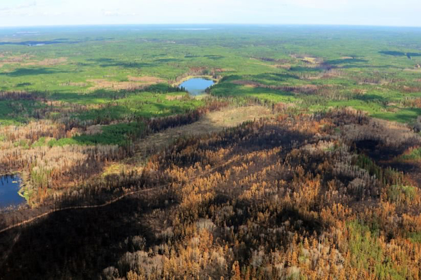 Fire ban lifted in P.A. National Park